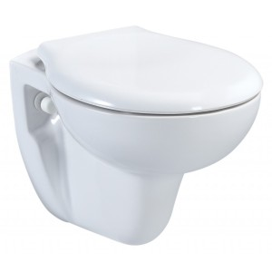 Wall Hung Toilet Disabled Bathrooms MCL Kent